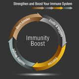Boost and Stregthen Your Immune System Chart. An image of a Boost and Stregthen Your Immune System Chart Vector Illustration