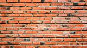 Brick Wall for Background Textures royalty free stock photos