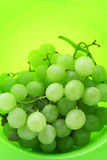 Image of bright green background with wet grape Royalty Free Stock Images
