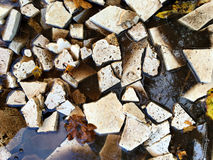 Image of broken tiles and Autumn leaves in puddle. Royalty Free Stock Photo