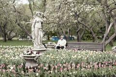 Image brouillée de vintage d'homme plus âgé méconnaissable, retraité, repos isolé en parc de floraison Foyer sélectif Ressort Photographie stock