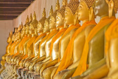 Image of buddha. Group image of boddha in temple Stock Photo