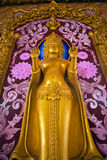 Image of Buddha. Statue at Thailand Royalty Free Stock Images