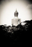 Image of buddha. Back of image of buddha in Bangkok Thailand royalty free stock photos