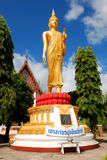 The image of Buddha in the temple Royalty Free Stock Image