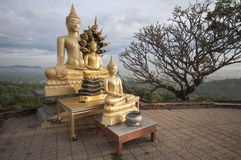 Image of buddha. Tree golden image of buddha on the mountian Royalty Free Stock Image
