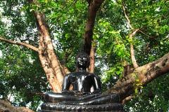 Image of the Buddha Royalty Free Stock Image