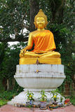 Image of Buddha under the tree. The image of Buddha under the tree and many things for religious ceremony Royalty Free Stock Photography