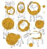 Image of a bull, cat, dog, goat, pig, horse, sheep Stock Photos