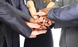 Image of business partners Stock Photography