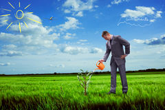 Image of businessman watering money tree Royalty Free Stock Images