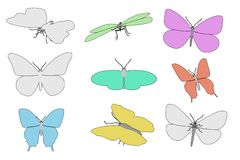 Image of buttefly animals Stock Photos