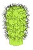Image of cactus flower Stock Image