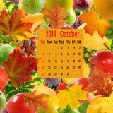 Image of calendar october 2019 on fruit background. Close-up stock photography