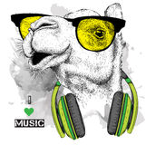 The image of the camel in the glasses, headphones and in hip-hop hat. Vector illustration. Royalty Free Stock Photo