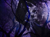 Dead trees with skull ghost in mysterious shadows in light purple color. The image can be used in concepts of Halloween, Friday the 13th, Imaginary Royalty Free Stock Photography