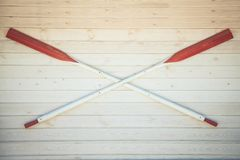 Canoe Paddles are hanging on the white wooden wall. Copyspace stock photography