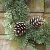 Image carrée d'une décoration de Noël Image libre de droits
