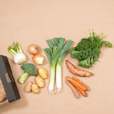 Image carrée du petit assortiment des légumes frais Image libre de droits