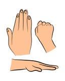 Image of cartoon human hand gesture set. Vector illustration isolated on white background. Image of cartoon human hand gesture set. Vector illustration isolated Royalty Free Stock Image