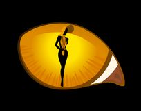 Image of cat eyes Royalty Free Stock Photo
