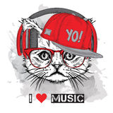 The image of the cat in the glasses, headphones and in hip-hop hat. Vector illustration. Stock Image