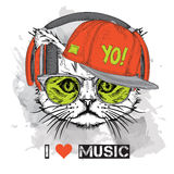 The image of the cat in the glasses, headphones and in hip-hop hat. Vector illustration. Royalty Free Stock Images