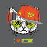 The image of the cat in the glasses, headphones and in hip-hop hat. Vector illustration. Stock Images