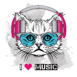 The image of the cat in the glasses and headphones. Vector illustration. Stock Images