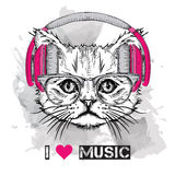 The image of the cat in the glasses and headphones. Vector illustration. Royalty Free Stock Photos
