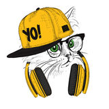 The image of the cat in the glasses and headphones. Vector illustration. Royalty Free Stock Photo