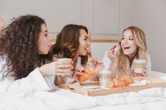 Image of caucasian smiling women 20s wearing white housecoat having breakfast in bed in luxuty apartment or hotel room, during ba. Image of caucasian smiling stock photos