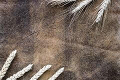 Image of cereal ears on a decorative background