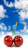 image of cherries on sky background Royalty Free Stock Photos