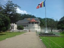This image is city of kandy ,religion place of srilanka royalty free stock images