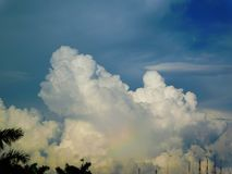 Cloudy sky and palms Stock Photos