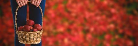 Image composée de la mi section de la femme tenant des pommes dans le panier en osier Photographie stock