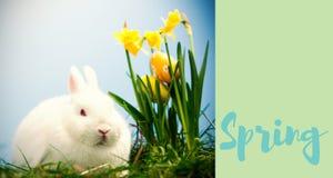 Image composée de la salutation de Pâques illustration stock