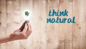 Image composée de main tenant l'ampoule environnementale Photographie stock libre de droits