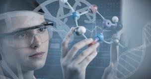 Image composée du plan rapproché du scientifique tenant le modèle moléculaire photographie stock libre de droits