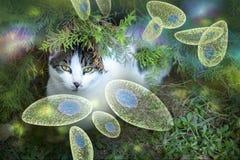 Image conceptuelle de conscience de gondii de toxoplasme Photographie stock