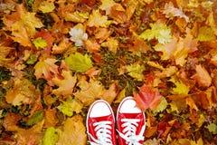 Image conceptuelle de style de hippie des jambes dans les bottes, chaussures en caoutchouc à la mode Image stock