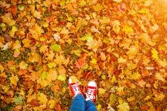 Image conceptuelle de style de hippie des jambes dans les bottes, chaussures en caoutchouc à la mode Photo stock