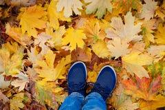 Image conceptuelle de style de hippie des jambes dans les bottes, chaussures en caoutchouc à la mode sur des feuilles d'automne d Photo stock