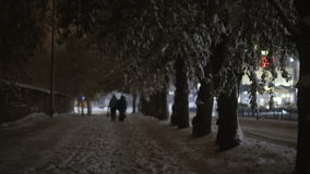 An image of the couple walking in winter. Time stock video footage