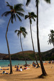 Image courante de baie de Hanauma, Oahu, Hawaï Image libre de droits