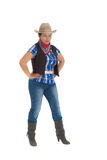 Image of the cowboy Stock Image
