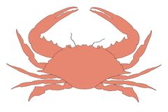 Image of crab animal Royalty Free Stock Photo