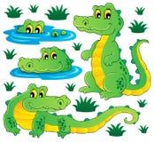 Image with crocodile theme 3 royalty free stock image