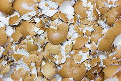 Image of crushed egg shells backgrounds. Crack the egg Stock Photos